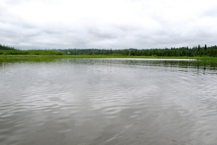Rivière Kanasuta 09 511