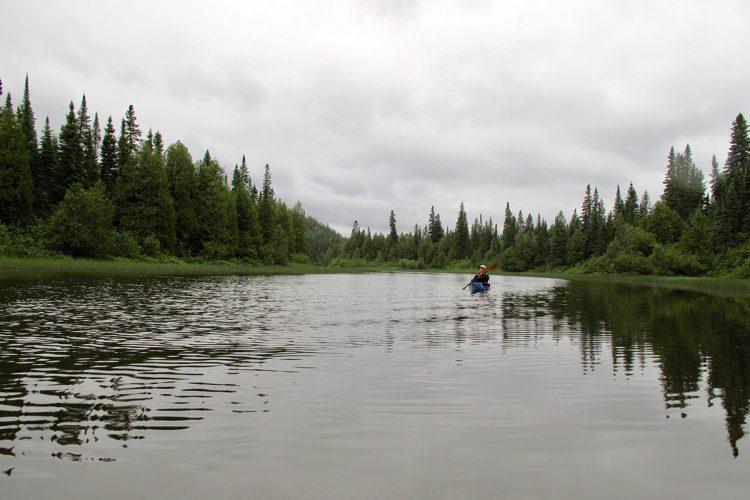 Rivière Kanasuta 09 541