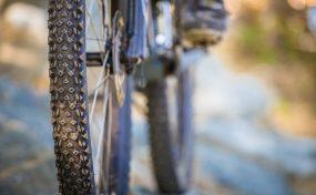 Vélo De Montagne Forêt Récréative 0989
