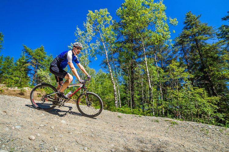 Vélo De Montagne Forêt Récréative 0054
