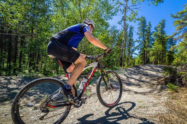 Vélo De Montagne Forêt Récréative 0068
