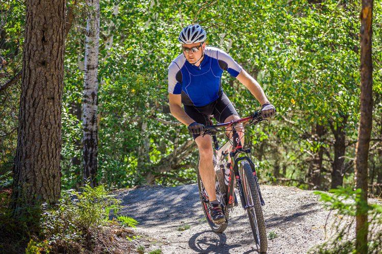 Vélo De Montagne Forêt Récréative 0150
