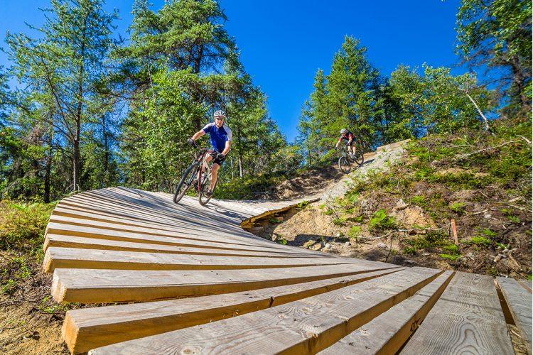 Vélo De Montagne Forêt Récréative 0224
