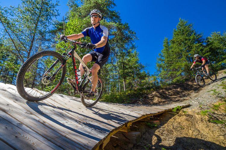 Vélo De Montagne Forêt Récréative 0238