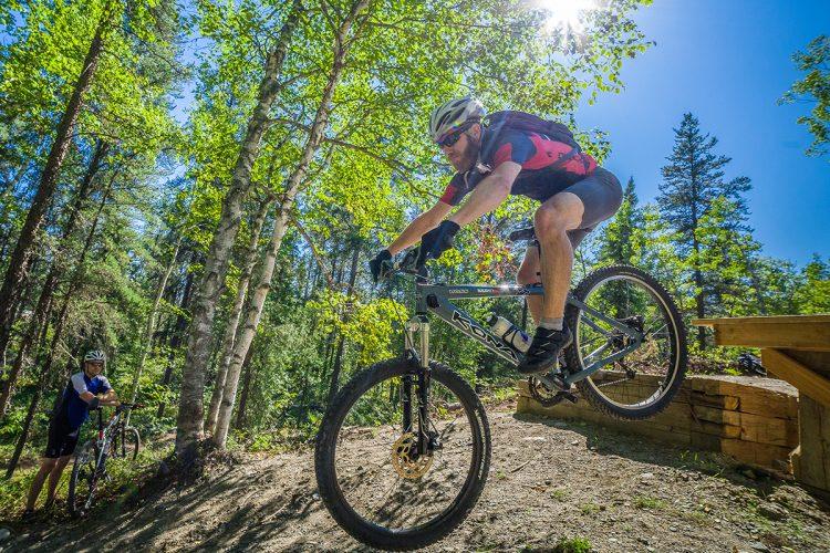 Vélo De Montagne Forêt Récréative 0265