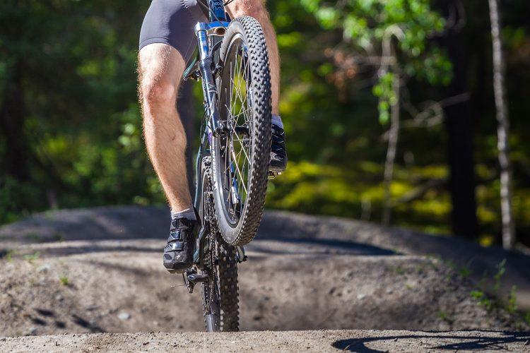 Vélo De Montagne Forêt Récréative 0347