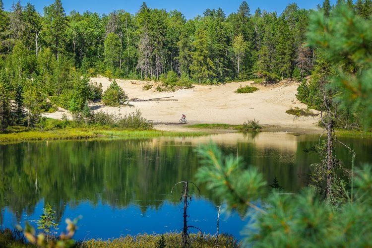 Vélo De Montagne Forêt Récréative 0495