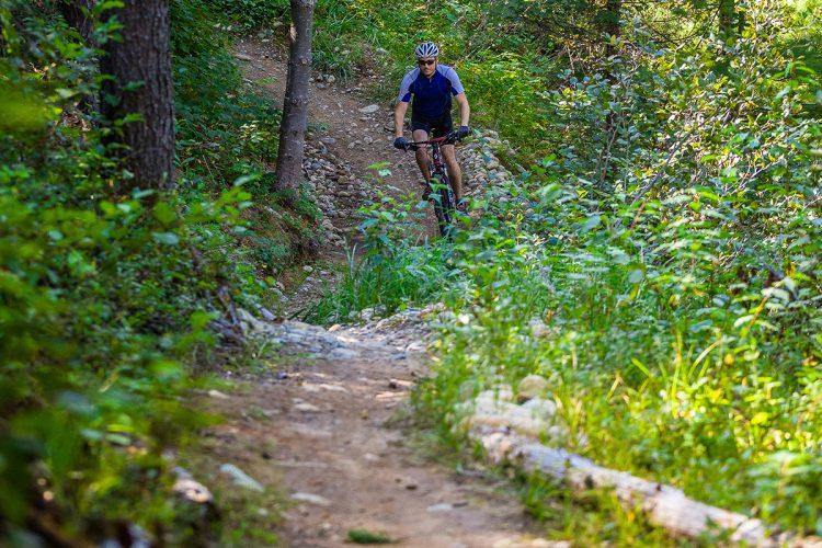 Vélo De Montagne Forêt Récréative 0501