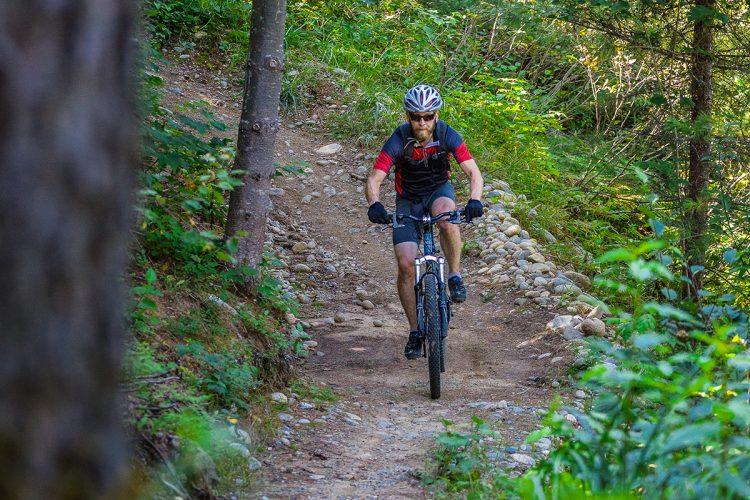 Vélo De Montagne Forêt Récréative 0579