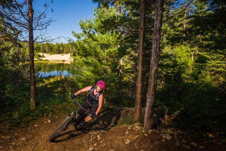 Vélo De Montagne Forêt Récréative 0694