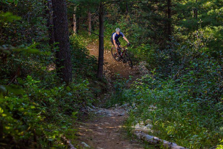 Vélo De Montagne Forêt Récréative 0715