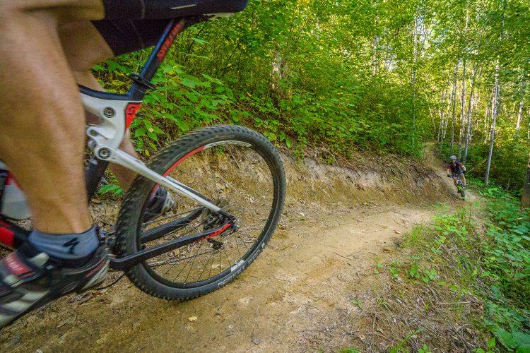 Vélo De Montagne Forêt Récréative 0893