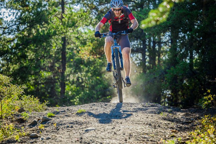 Vélo De Montagne Forêt Récréative 1061