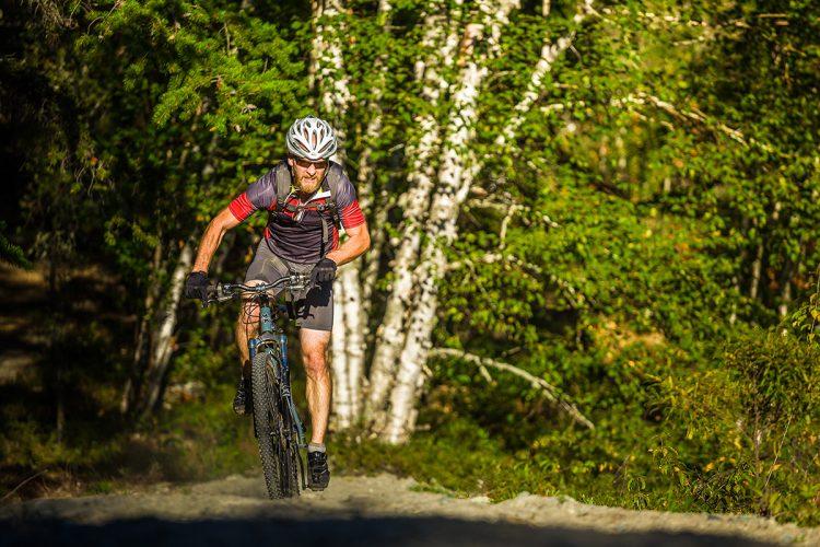 Vélo De Montagne Forêt Récréative 1113