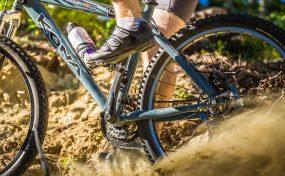 Vélo De Montagne Forêt Récréative 1036
